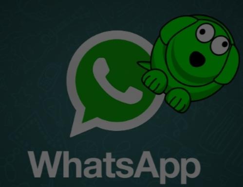 WhatsDog APK İndir